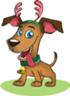 Puppies For Sale - Various Breeds - Ready for Christmas!!