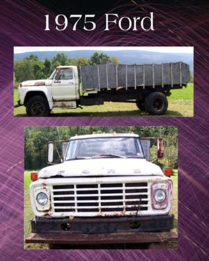 1975 Ford F600 Dump Truck A runaway truck ramp, runaway truck lane, escape lane, emergency escape ramp, or truck arrester bed is a traffic device that enables vehicles which are having braking. 1975 ford f600 dump truck